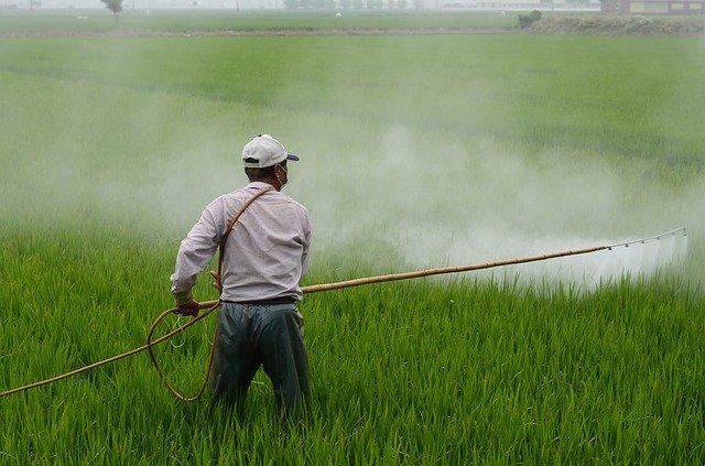 Herbicydy przeciw inwazyjnym kasztanom wodnym